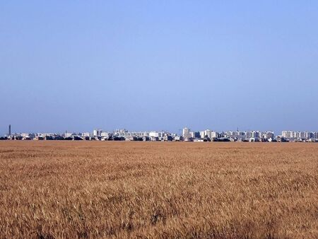 Large industrial city in the distance of a wheat field with a ripe harvest
