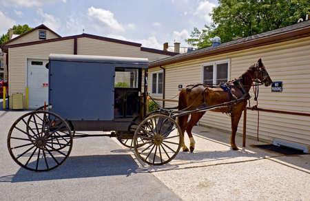Amish Horse and Buggy , Pennsylvania  photo