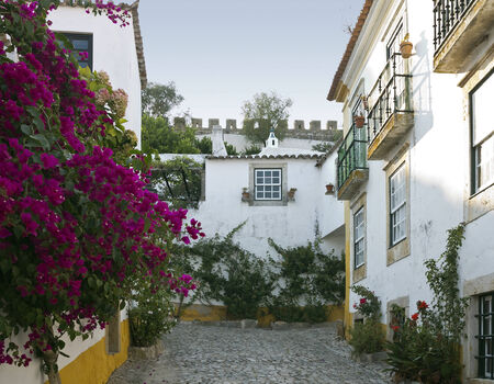 fortified wall: Town Obidos is located on a hilltop, encircled by a fortified wall.