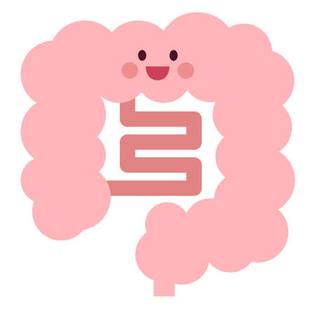 Healthy Bowel Character  イラスト・ベクター素材