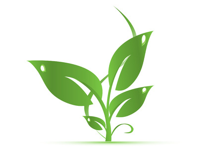 basura organica: hojas verdes aisladas sobre fondo blanco Vectores