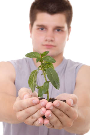hands holding plant: a young man holding a plant in hands