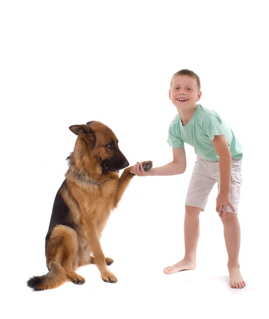 dog and boy are handled photo