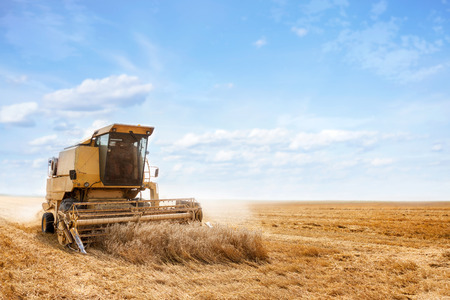 an yellow old harvester in work