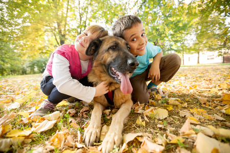 little girl and boy in the park with a German Shepherd photo