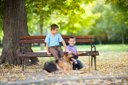 Children siting on the bench in park with a German Shepherd photo