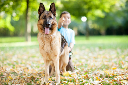 young boy relaxing with  German Shepherd in park photo