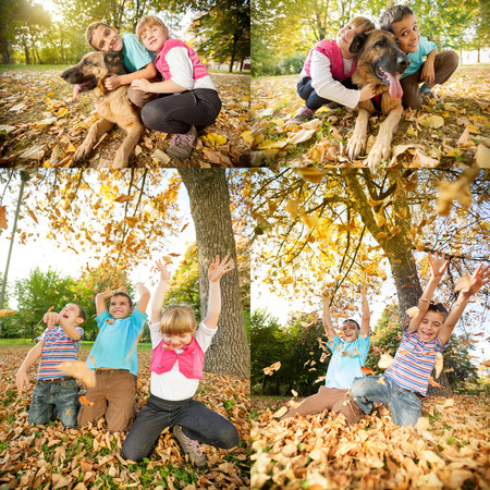 Collage of young children in the park with German Shepherd photo