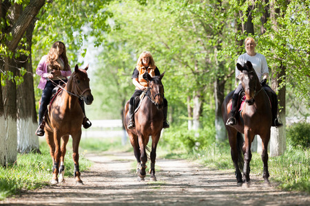 three women: three women riding purebred brown horses in the forest