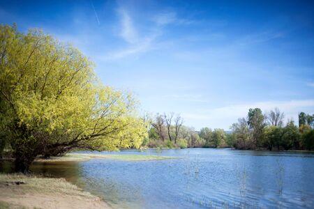 bayou: bayou on the blue Danube on sunny day