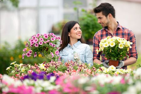 florists: Florists couple working with flowers at a greenhouse Stock Photo