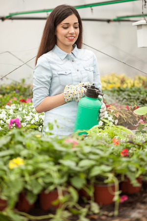 smiling woman in a greenhouse: smiling woman worker in greenhouse