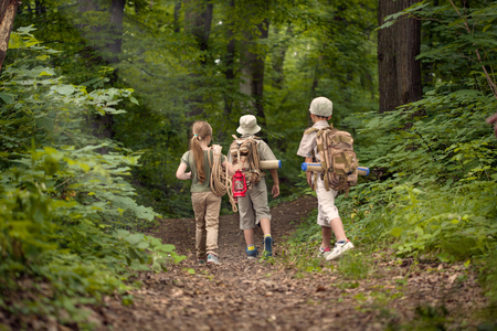 boys and girl go hiking with backpacks on forest road bright sunny day Foto de archivo