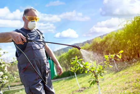 Agricultural worker spraying pesticide on fruit trees Foto de archivo