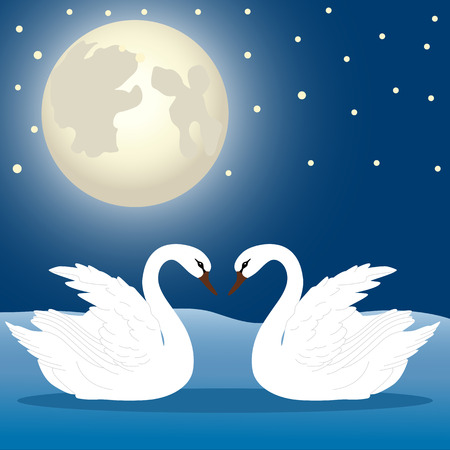 A pair of swans under the moonlight 版權商用圖片