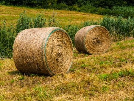 Straw packages on the field  Czech Republic  photo