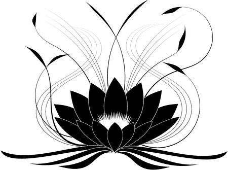 Black japanese lotus (vector illustration)