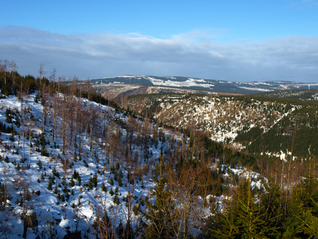 Jizera Mountains and devasted forest caused by acid rains photo