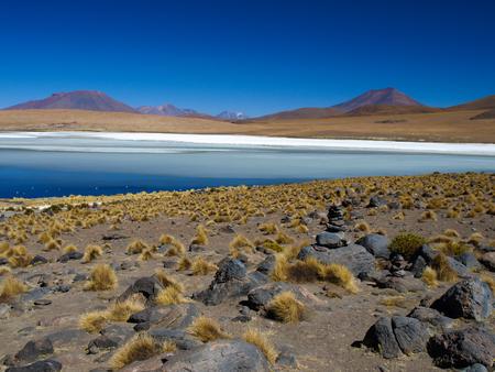 borax: Blue lagoon under the clear sky in bolivian altiplano Stock Photo