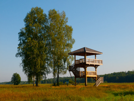 Wooden lookout tower near Bialowieza primeval forest (Poland)