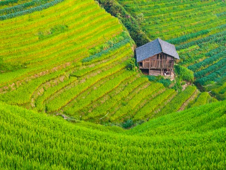 Wooden house on Dragons Backbone Rice Terraces, Longsheng, Guangxi, China Stock fotó