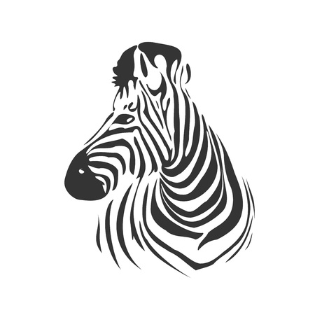 Head of zebra in black and white from profile, vector illustration Vector