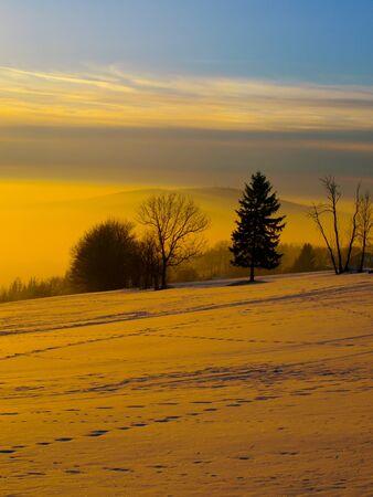 colores calidos: La puesta del sol del invierno en paisaje con árboles, colores cálidos Foto de archivo