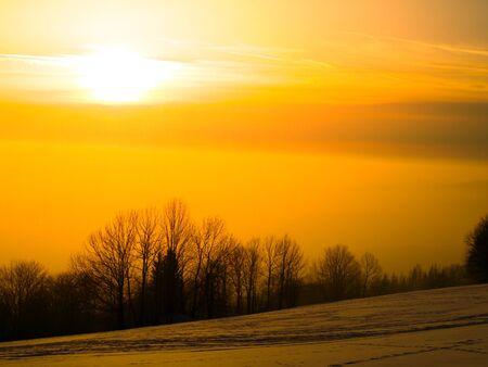 warm colors: la puesta del sol en invierno paisaje con árboles, colores cálidos