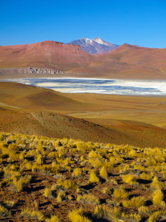 lipez: Landscape of Cordillera de Lipez with high mountains and Laguna Morejon, Bolivia