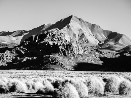 lipez: High peaks and typical grass clumps in Cordillera de Lipez in southern bolivian Altiplano, black and white image