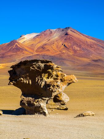 lipez: Stone tree rock formation in desert landscape of Altiplano with blue sky, Bolivia Stock Photo