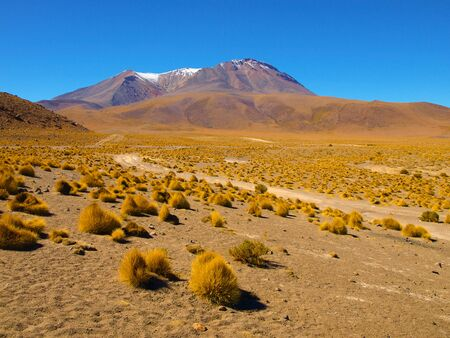 lipez: High peaks and typical grass clumps in Cordillera de Lipez in southern bolivian Altiplano