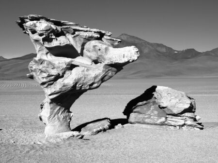 strange mountain: Stone tree rock formation in desert landscape of Altiplano with blue sky, Bolivia, black and white image