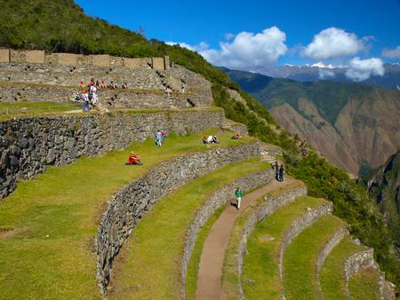 machu picchu: Green terraces of Machu Picchu in Peru