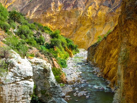 the river: Wild Colca River on the bottom of Colca Canyon in Peru