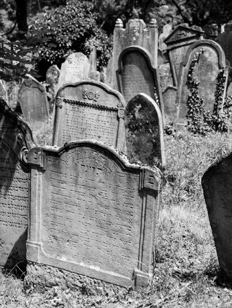 headstones: Headstones in the Jewish cemetery. Black and white image.