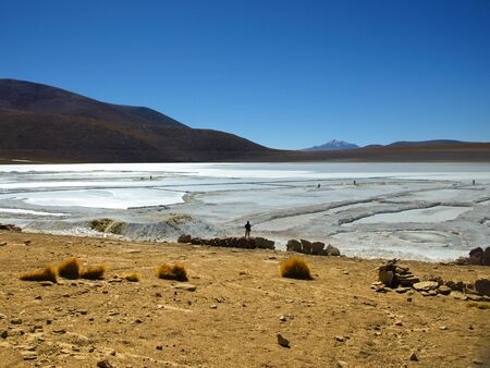 lipez: Borax mines in andean lagoon on sunny day with clear blue sky, Bolivia