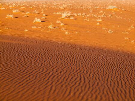 sand texture: Desert sand background. Red sand texture from Namib Desert