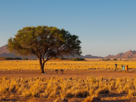 camping site: Camping site under the tree with two chairs and litter bins in african wilderness, Sossusvlei, Namibia Stock Photo