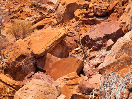 stone lion: Bushman prehistoric rock engravings in Twyfelfontein, Namibia.