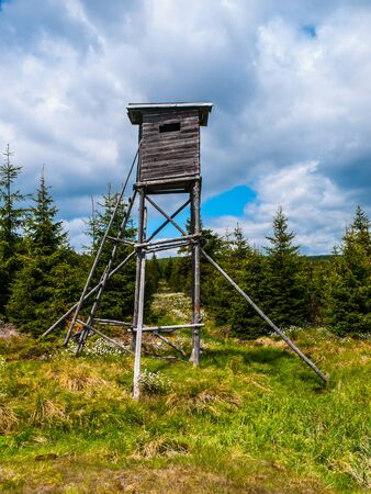 hunters tower: Wooden high seat tower for hunters in the forest Stock Photo