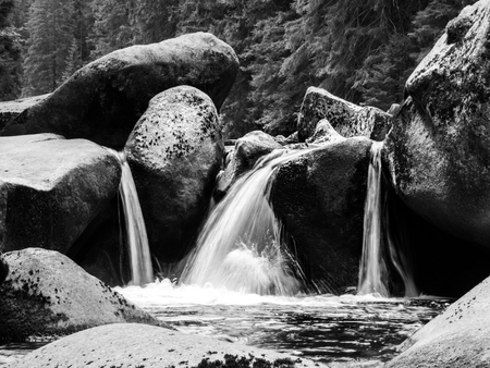 wild silky white: Blurred river stream detail of wild rocky mountain river. Silky effect. Motion rendition effect. Slow shutter speed effect. Long exposure effect. . Black and white image. Stock Photo