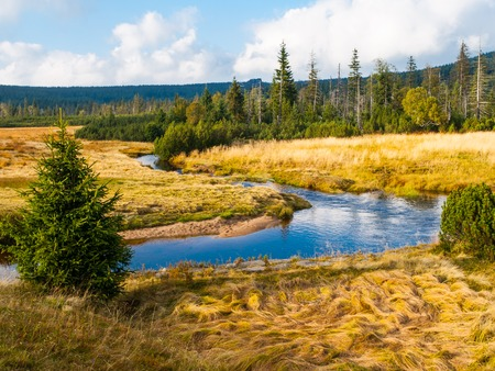 meandering: Small mountain creek meandering in the middle of meadows and forest. Sunny day with blue sky and white clouds in Jizera Mountains, Northern Bohemia, Czech Republic. Stock Photo