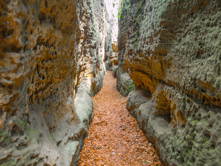 Narrow passage in sandstone gorge of Maze rock city in Krivoklatsko protected area, Czech Republic.
