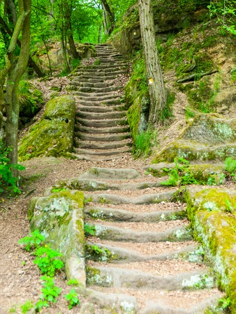 Long sandstone stairs in the forest, Mseno, Kokorinsko, Czech Republic