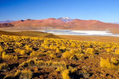Landscape of Cordillera de Lipez with high mountains and Laguna Morejon, Andean Altiplano, Bolivia. Stock Photo
