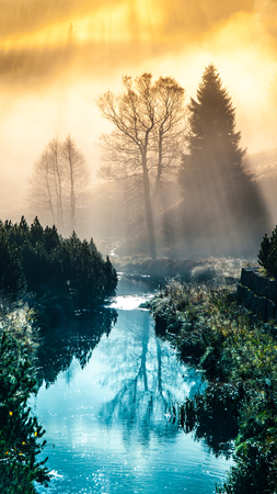 Foggy morning in the mountains with first sun beams. Trees reflected in the water.