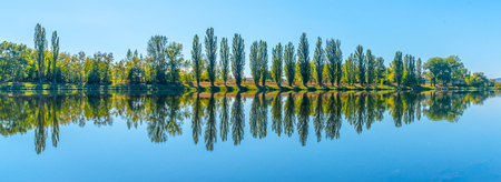 Alley of lush green poplar trees reflected in the water on sunny summer day. Foto de archivo
