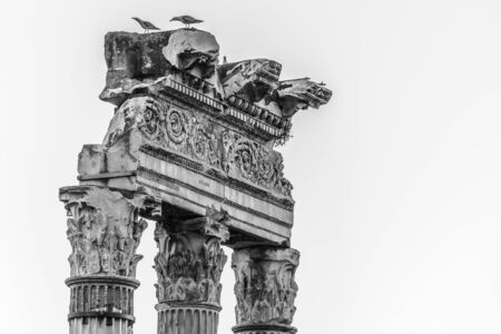 Detailed view of temple ruins in Roman Forum, Rome, Italy. Black and white image.
