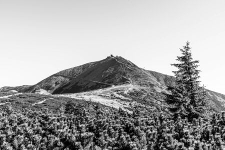 Snezka, or Sniezka - the highest mountain of Czech Republic, Giant Mountains - Krkonose National Park, Czech Republic and Poland. Black and white image. Imagens